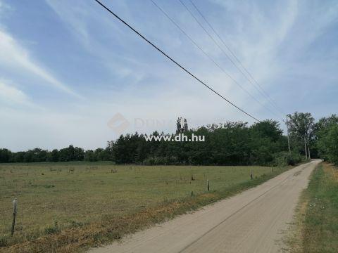 Eladó Telek, Bács-Kiskun megye, Kiskunfélegyháza - selymes